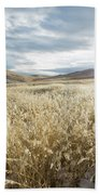 Fields Of Grass In Nevada Desert Beach Towel