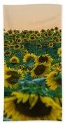 Fields Of Yellow  Beach Towel
