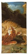 Fight Between A Lion And A Tiger, 1797 Beach Towel by James Ward