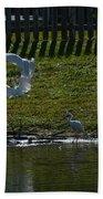 Fighting Birds Beach Towel