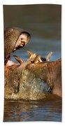 Fighting Hippo's Beach Towel