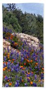 Figueroa Mountain Splendor Beach Towel