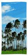 Fiji Beach Towel
