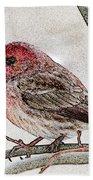 Finch Art Beach Towel