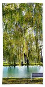 Finger Lakes Weeping Willows Beach Towel