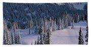 Fir Trees, Mount Rainier National Park Beach Sheet