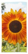 Fire Petals Beach Towel