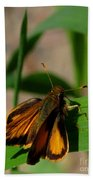 Fire Skipper Beach Towel