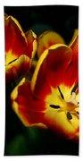 Fire Tulip Flowers Beach Towel