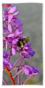 Fireweed Bee Beach Towel