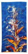 Fireweed Flower Beach Towel by Heiko Koehrer-Wagner