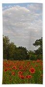 Firewheel Field Beach Towel