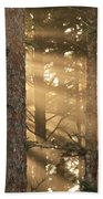Firs On Fire Beach Towel