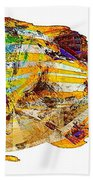 Fish 506-11-13 Marucii Beach Towel