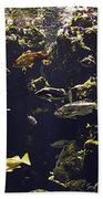 Fish Aquarium Beach Towel