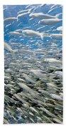 Fish Freeway Beach Towel