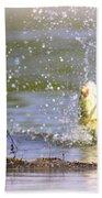 Fish-img-0717-004 Beach Towel