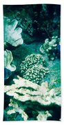 Fish In The Coral Beach Towel