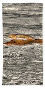 Fish Beach Towel