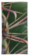 Fishhook Barrel Cactus Spines Beach Towel