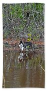 Fishing Feline Beach Towel