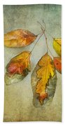 Five Autumn Leaves Beach Towel