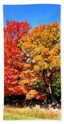 Flamboyant Autumn Beach Towel