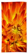 Flaming Dahlia - Paintography Beach Towel