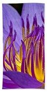 Flaming Heart Beach Towel by Susan Candelario