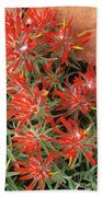 Flaming Zion Paintbrush Wildflowers Beach Towel