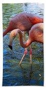 Flamingo Duo Beach Towel