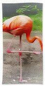 Flamingo Four Beach Towel