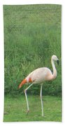 Flamingo March Beach Towel