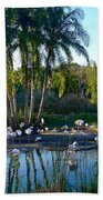 Flamingo Watering Hole Beach Towel