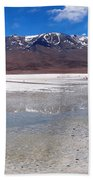 Flamingos At The Altiplano In A Salt Lake Beach Towel