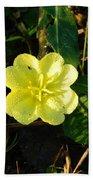 Fleur Jaune Couverte De Rosee Beach Towel