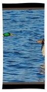 Flight Of The Mallards Beach Towel