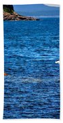 Flight Of The Seagulls Beach Towel
