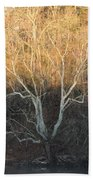 Flint River 12 Beach Towel