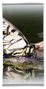Floating In Water - Swallowtail -butterfly Beach Towel