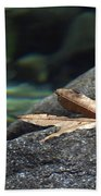 Floating.  Tahquitz Canyon. Palm Springs California.  Beach Towel