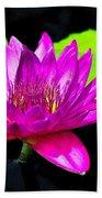 Floating Purple Water Lily Beach Sheet