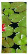 Floating Red Water Lilly Flowers On Pond Beach Towel