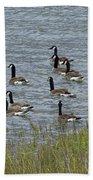 Flock Of Canada Geese   #7116 Beach Towel