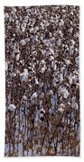 Flooded Cotton Fields Beach Towel