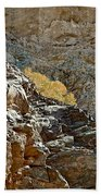Flora In Sunlight In Big Painted Canyon Trail In Mecca Hills-ca Beach Towel