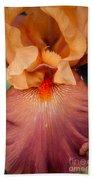 Floral 47 Beach Towel
