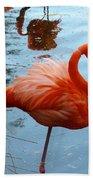 Florida Flamingo Beach Towel