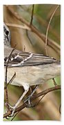 Florida Mockingbird Beach Towel