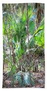 Florida Palmetto Bush Beach Towel